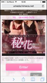 姫花(ひめか)HP画面