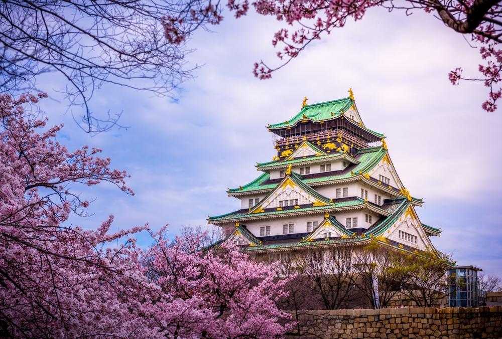 桜と大阪城画像
