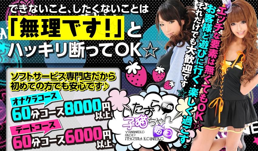 【オナクラ】いたずら子猫ちゃん(大阪・神戸)の口コミ・評価・評判・求人情報など