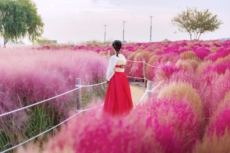 チマチョゴリの女性(韓国)