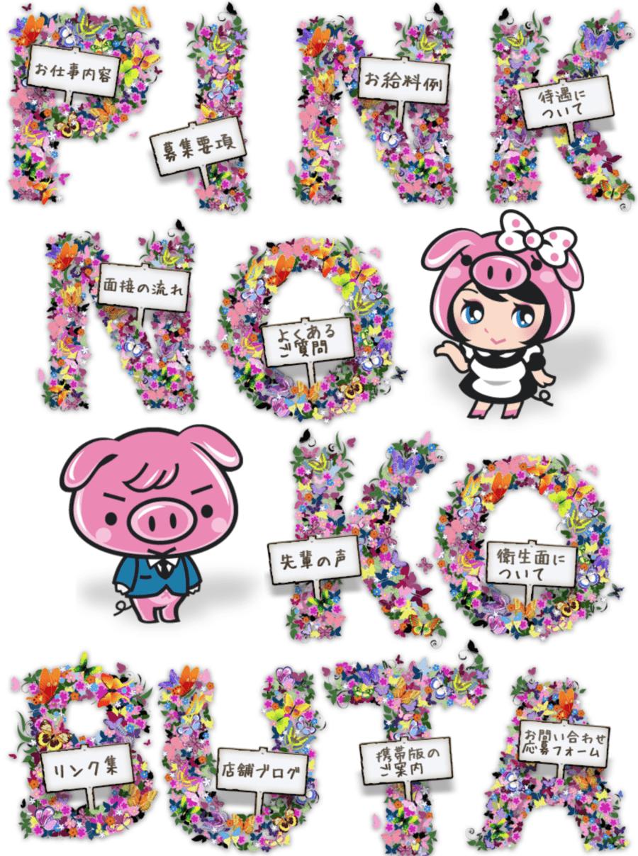 【ぽっちゃりデリヘル嬢】ピンクの仔豚【大阪十三】